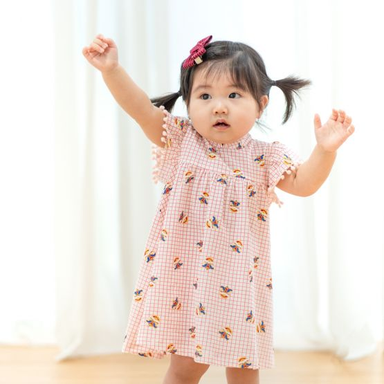 Lion Dance Series - Baby Girl Jersey Dress with Pink Grid Print