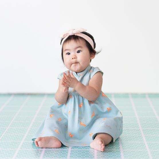 Crane Series - Baby Girl Dress in Sky Blue